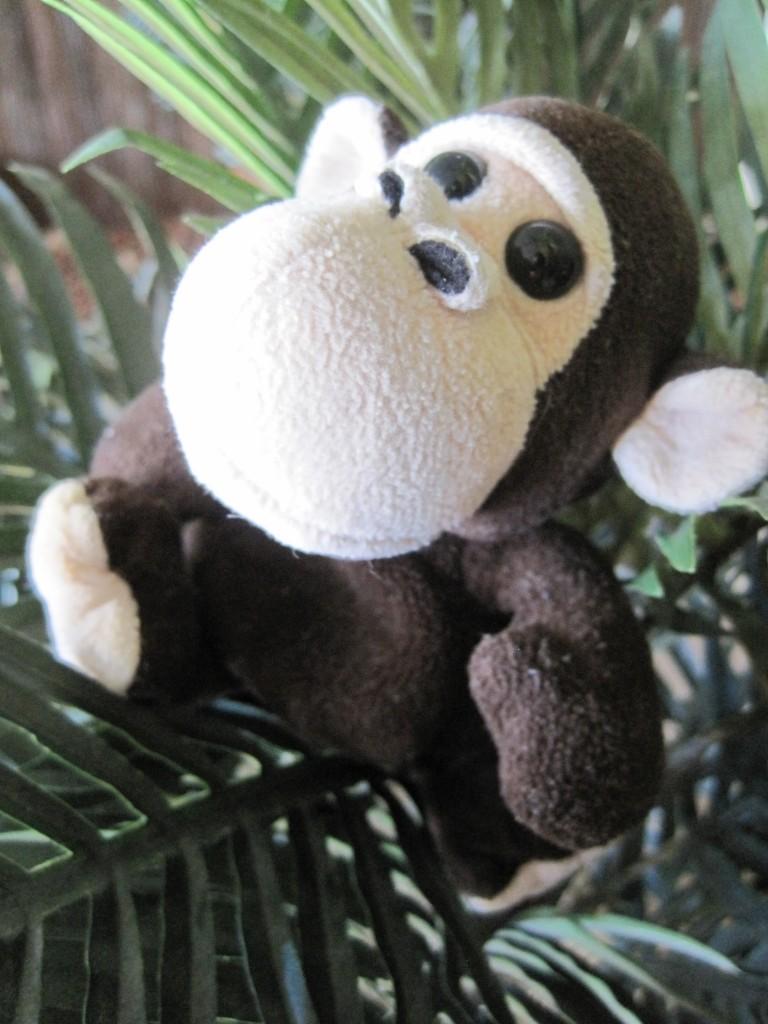 1st Birthday Monkey Theme