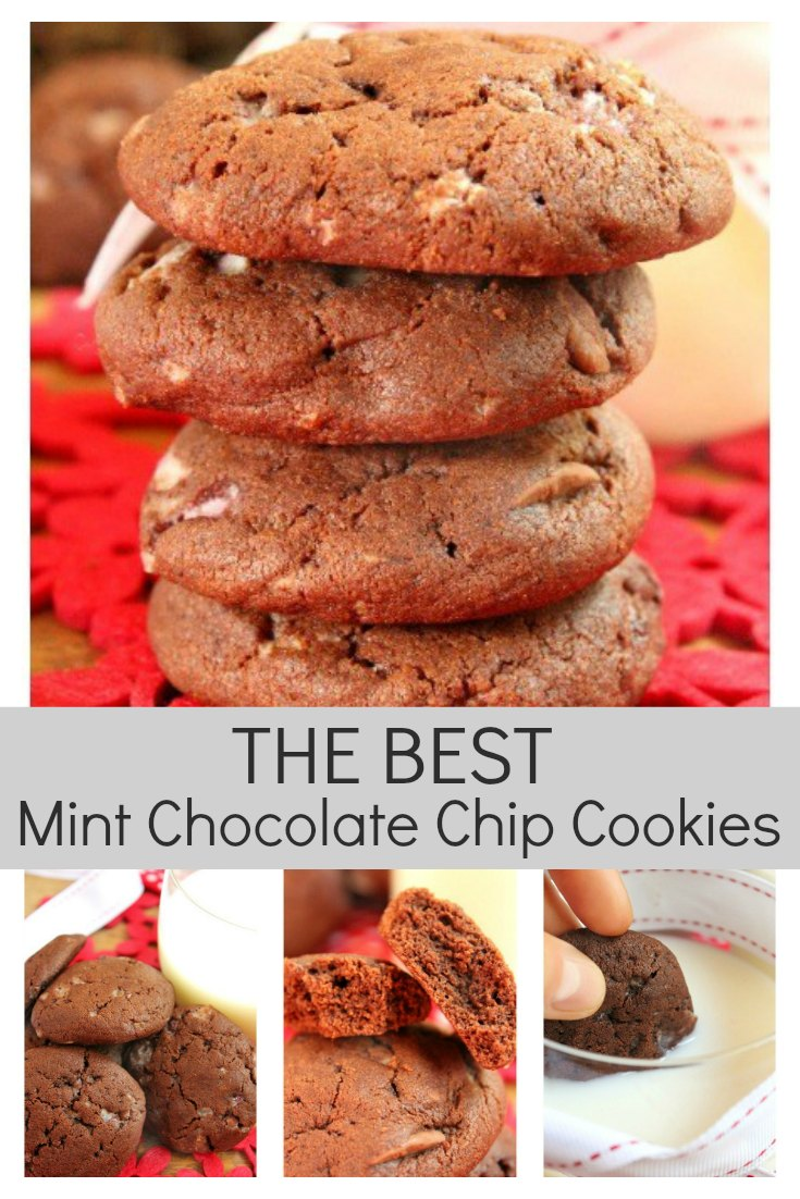 The Best Mint Chocolate Chip Cookies