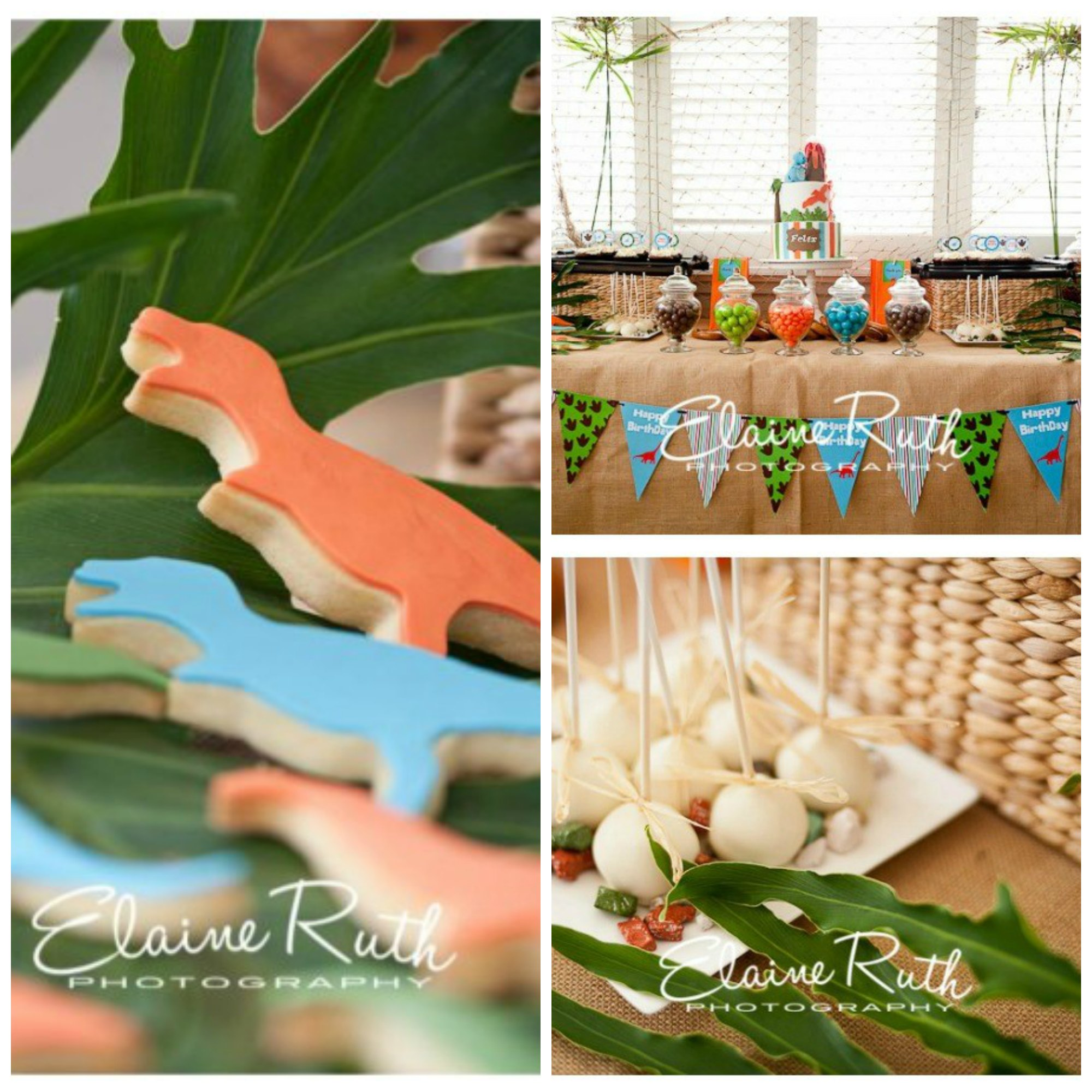 Dinosaur birthday party display