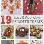 19 Reindeer Treats