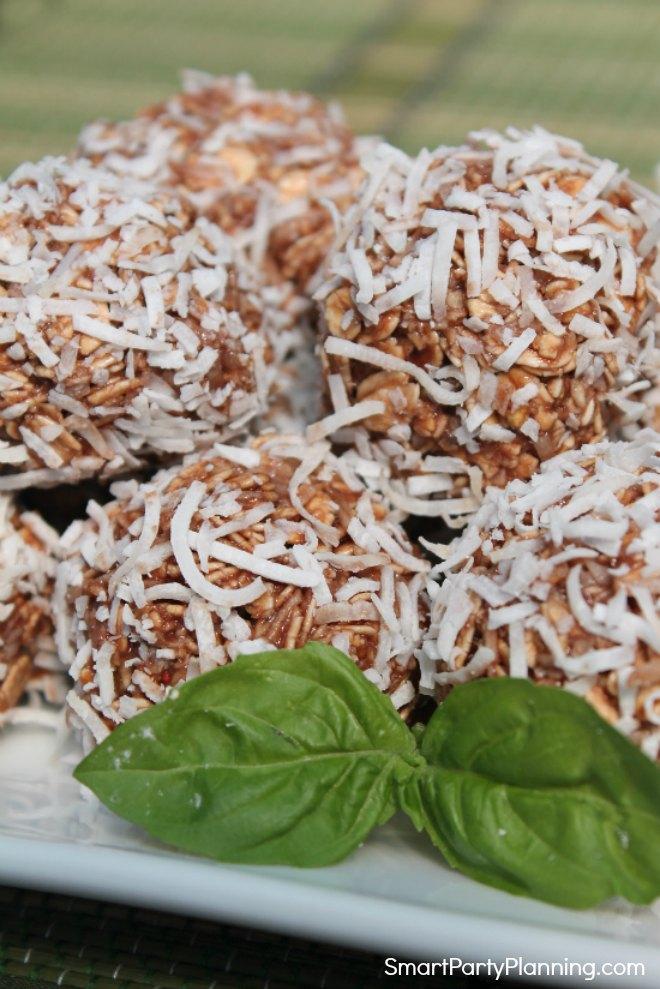 Chocolate coconut Isagenix protein balls