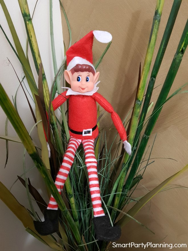 Elf on the Shelf sitting in a pot plant